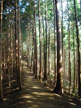 2008.9.7伊豆ヶ岳1