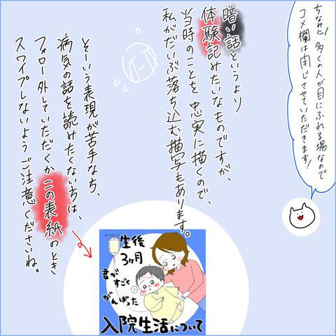 kawasaki008