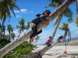 カヤンゲルのヤシの木に登る