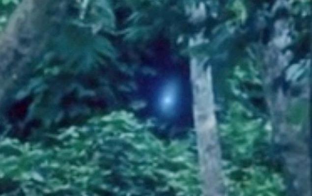 alien4_1395170a