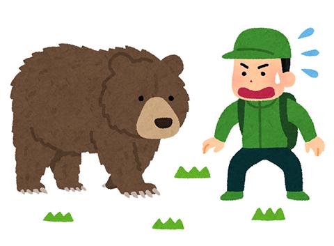 熊 (6)