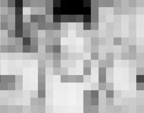 1319f360.jpg