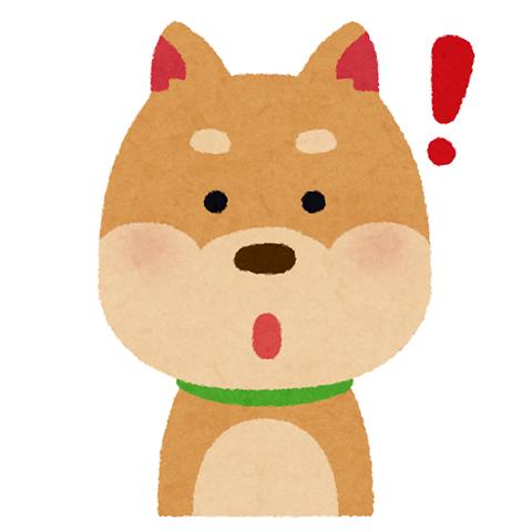 犬 (13)