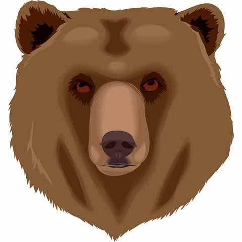 熊 (2)