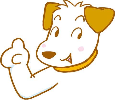 【聞いてくれ】犬から尊敬されたいんだけど何か1目置かれる方法ない????????