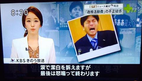 日本人馬鹿