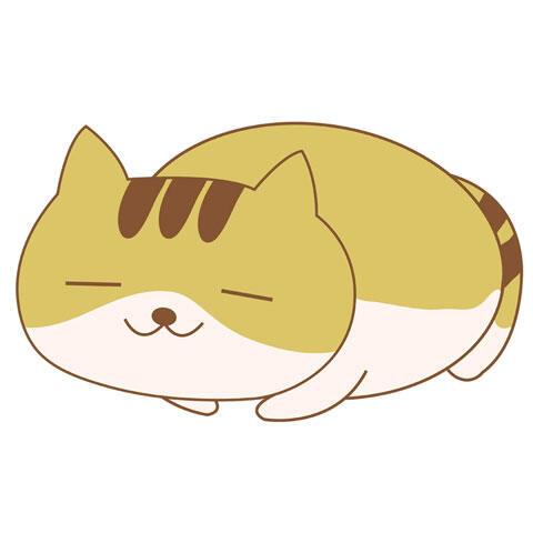 穏やかな表情で眠るトラ猫