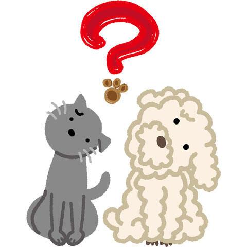 首をかしげる犬と猫