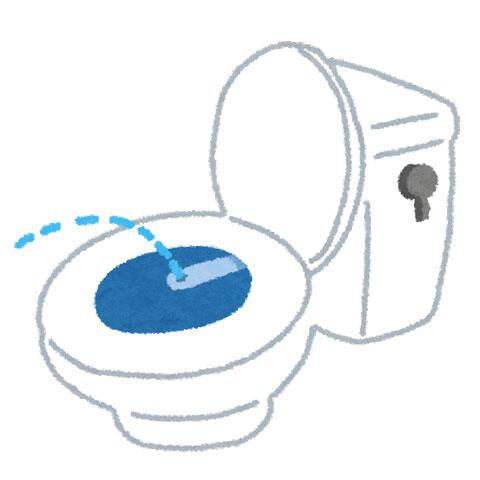 ウォシュレット 温水洗浄便座