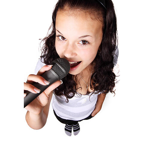 歌手 (4)