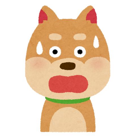 【画像あり】動体を2/3に切断された犬が発見されるwwwwwwww