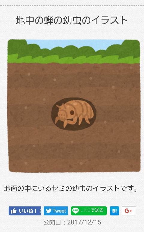 80dcff2c.jpg
