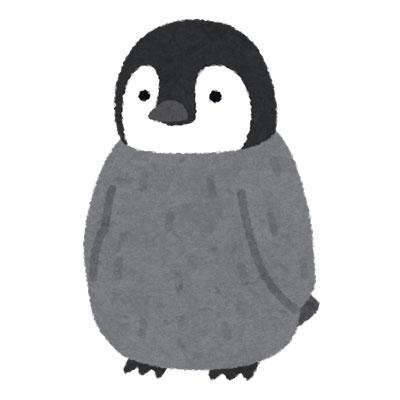 コウテイペンギン ヒナ