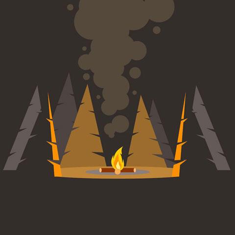 夜 たき火