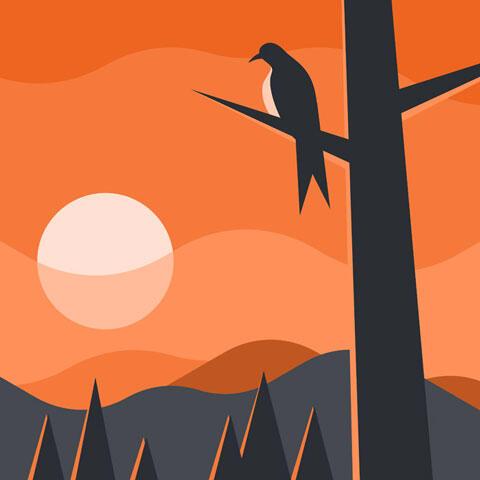 夕焼け空と木の枝に止まる鳥