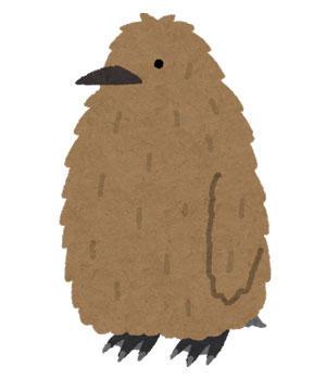 キングペンギン 雛