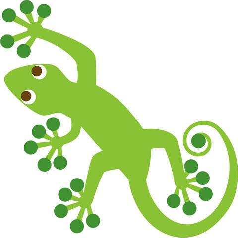 緑色のヤモリ