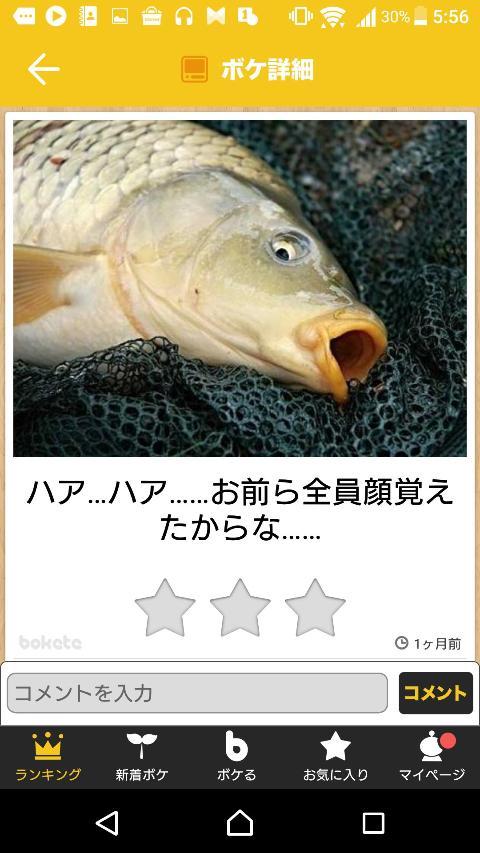 b9df053f.jpg