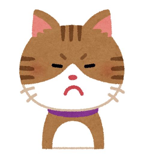 猫_001