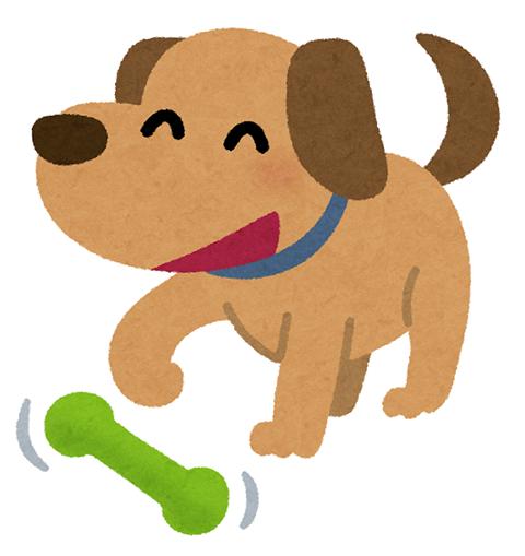 犬イライラ