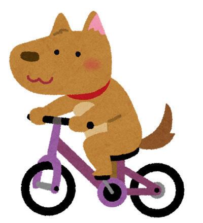 犬 自転車