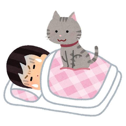 睡眠中に猫に乗られる人