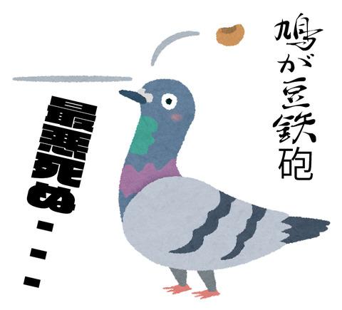 鳩が豆鉄砲