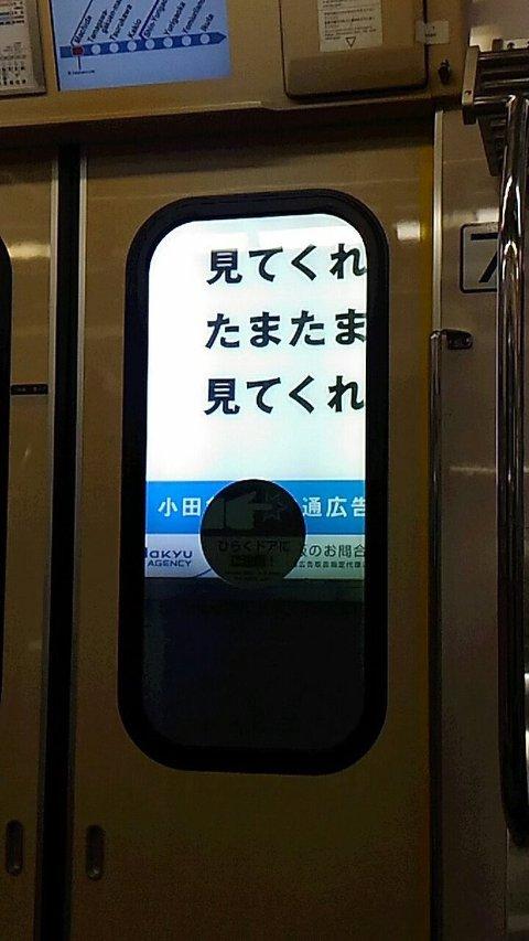 e3141a43.jpg