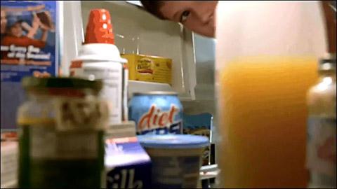 冷蔵庫 覗く