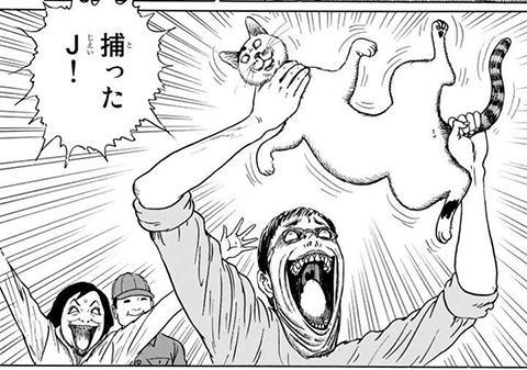 猫 伊藤潤二
