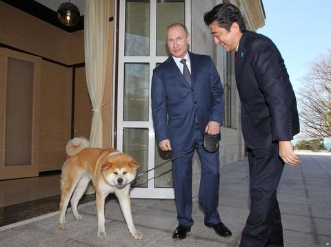 プーチン 犬