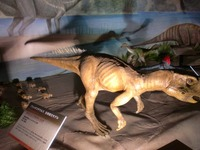 psittacosaurus_02