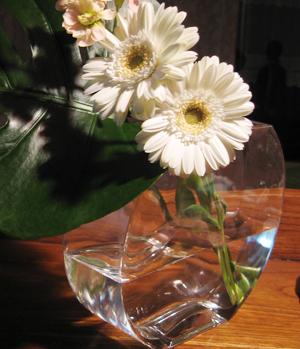 080416_flower