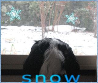 080113_snow