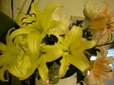 myflowers2