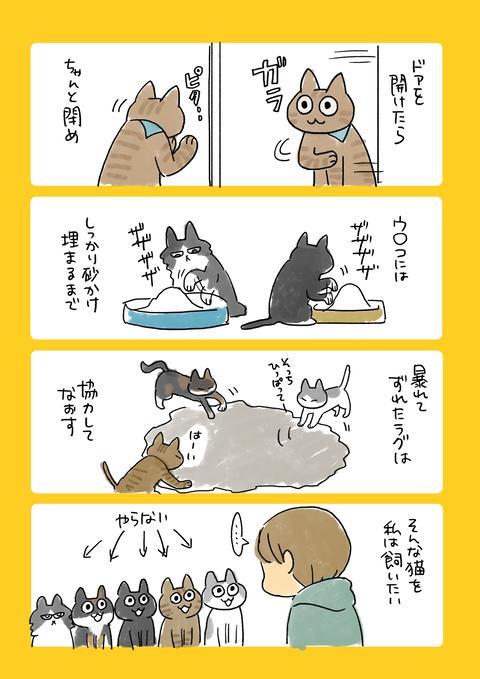 猫10記事7