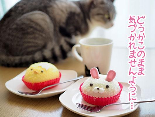 猫とケーキ
