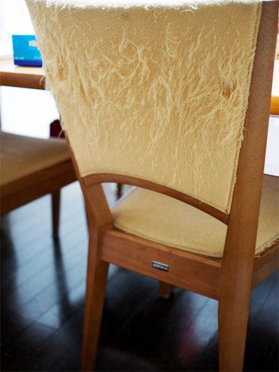 爪とぎにされた椅子