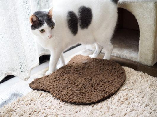 ネコ型マットと猫