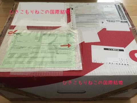 belgium package