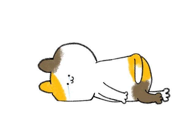 泣く-ねこ-2226087