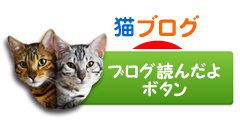 猫ブログ村ランキング