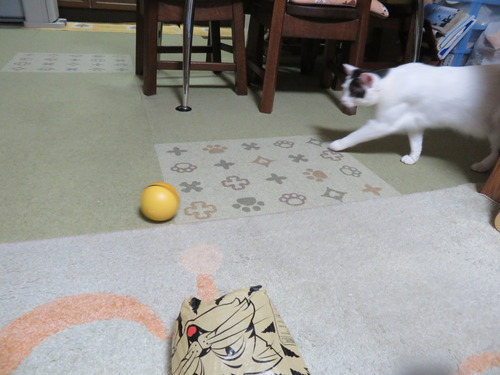 中のボールを出すと