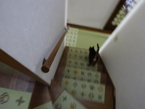 一緒に1階へ