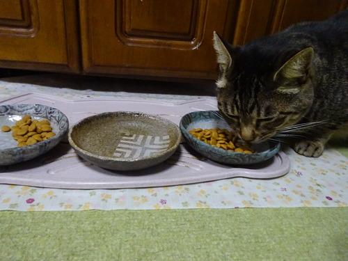 朝ご飯の残り