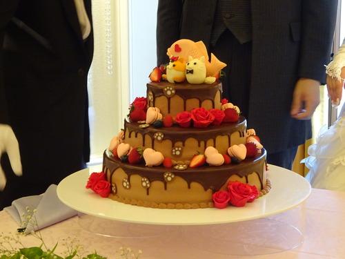 まろん&トトケーキ