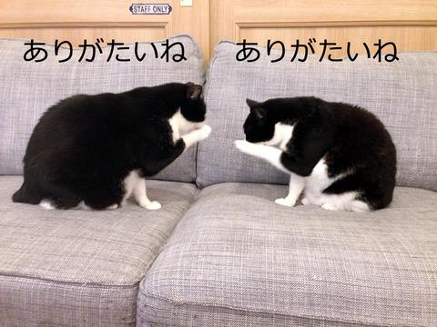 ★密談中の母娘(太)2