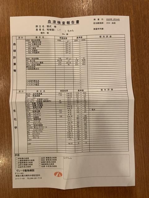 EE435312-9A9F-4A2E-8AD6-78FC31DEB060