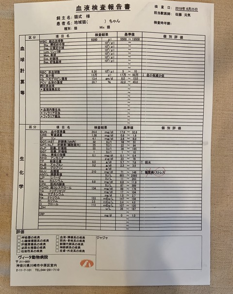 515539B3-F2F9-4B0D-9A32-3E6B1256BB15