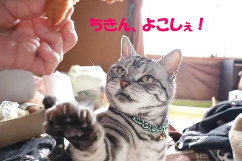 食べうっ!